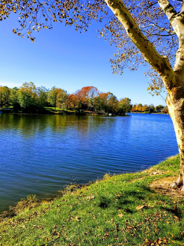 2414 Lake Park Rd, 3101, Lexington, KY 40502