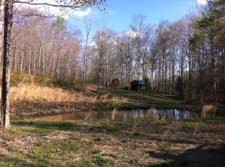 396 Happy Hollow Rd, Hustonville, KY 40437