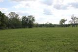 1152 McCauley Rd, Wilmore, KY 40390