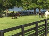 1885 Goodpaster Way, Lexington, KY 40505