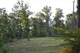 1 Tucker Woods Rd, Knifley, KY
